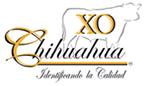 xoChihuahua2