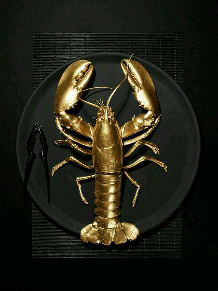 00f1b53097472621b4bbbc377b9d1a57--lobster-art-red-lobster