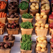 verduras-0