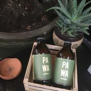 cerveza-de-aguacate-PAWA
