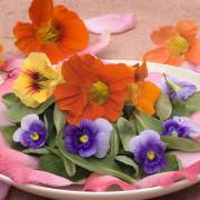 flores0