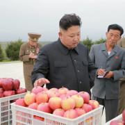 kim-jong-un-orgulloso-del-maiz-y-el-arroz-que-producen-las-granjas-de-corea-del-norte