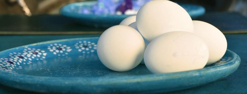 huevo_0
