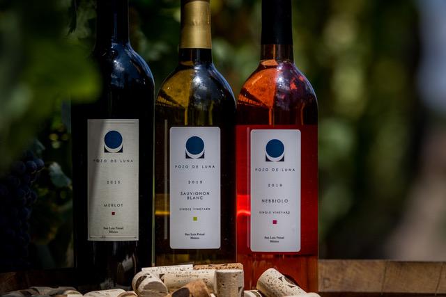 vinicola-dia-1-150